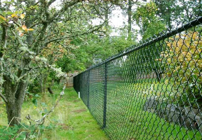 Chain Link Fences Vinyl Chain Link Fences Chain Link Gates All4fencing